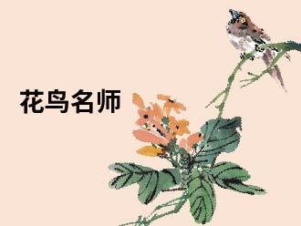 花鸟名师精品课