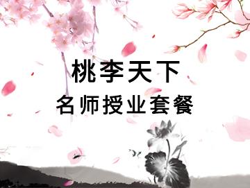桃李天下-名师授业套餐